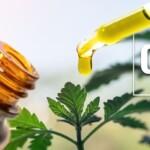 Pourquoi consommer de l'huile de CBG ?