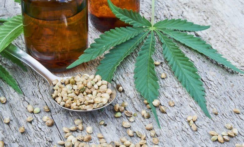 quels sont les effets des graines de cbd ?